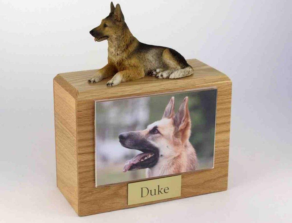 What To Do With The Ashes Wooden Pet Urn