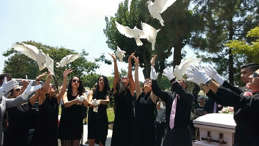 Releasing Doves