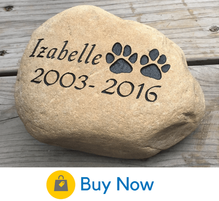 35 Beautiful Memorial Ideas For Your Cherished Dog