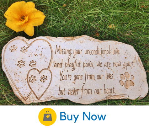 10 Precious Dog Headstones That You Can Buy For Your Home