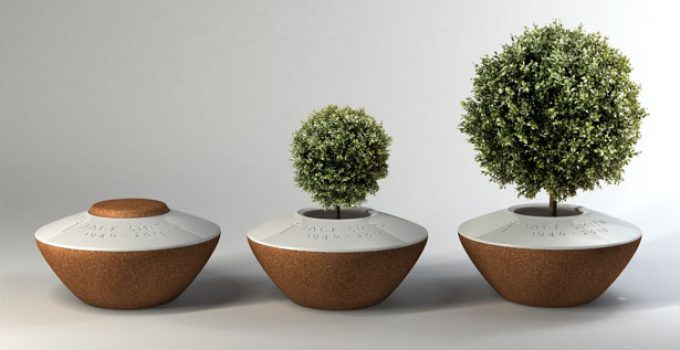 The Best Biodegradable Urns For Sale In 2021