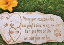 50 Beautiful Memorial Ideas For Your Cherished Dog