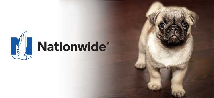 Nationwide Pet Insurance 2020 Review The Right Choice For You