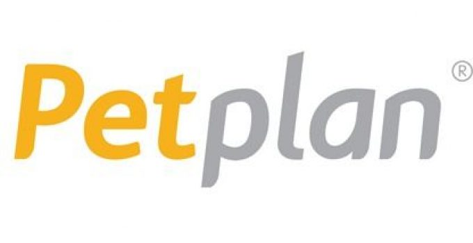 Petplan Insurance Review: The Right Choice In 2021?