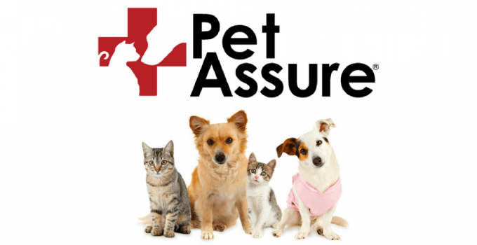 Pet Assure Review: Can You Really Save 25% On Vet Bills?