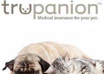 Trupanion Pet Insurance Review 2021: The Best Value?