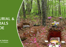Green Burial & Funerals Guide: What You Need To Know